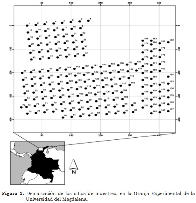 spatial variability of physical and chemical properties in