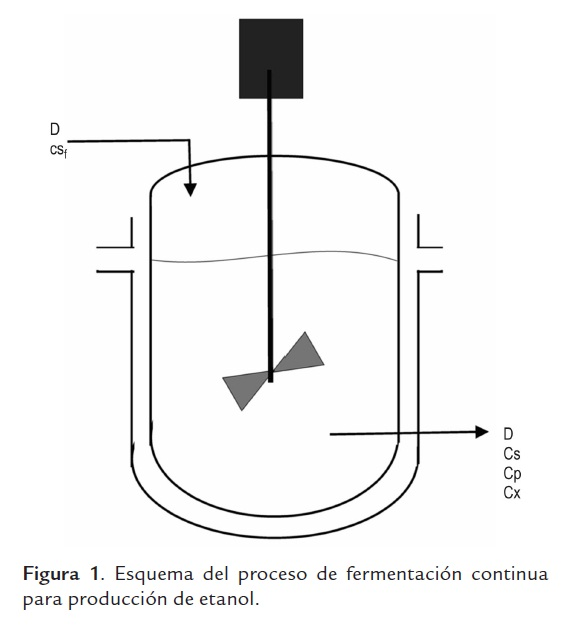 external image v13n1a04f1.jpg