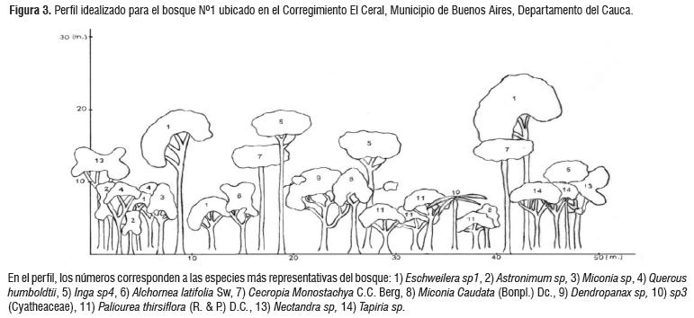 Structure And Floristic Diversity From Two Forests In Buenos