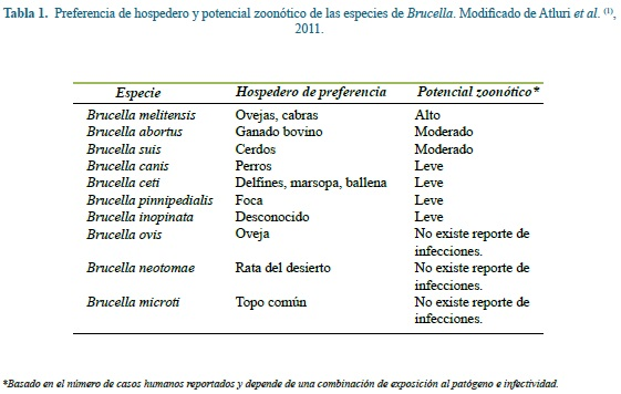 Design And Evaluation Of A Pcr Test For Detection Of Brucella Spp And Brucella Abortus