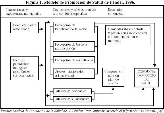 fundamentacion teoria educacion salud: