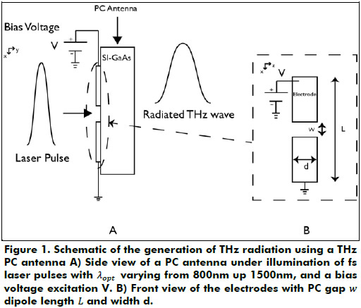 The transient current at the PC gap of the antenna radiates an  electromagnetic pulse in the THz frequency. 217ca67d04b0