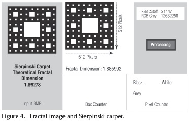 Identification of natural fractures using resistive image