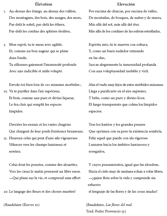 Elevation A Poem Not Translated By Andrés Holguín