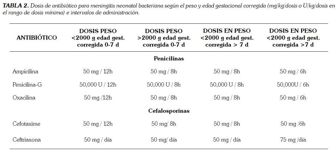 Meningitis Bacteria Related Keywords - Meningitis Bacteria