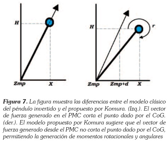 THEORETICAL AND COMPUTATIONAL ANALYSIS OF NORMAL AND PATHOLOGICAL ...