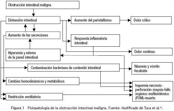 cancer de colon fisiopatologia)