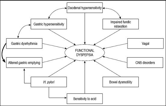 Visceral sensitivity and functional dyspepsia: Or much more than this?