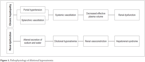 A Review Of Dilutional Hyponatremia And Liver Transplantation