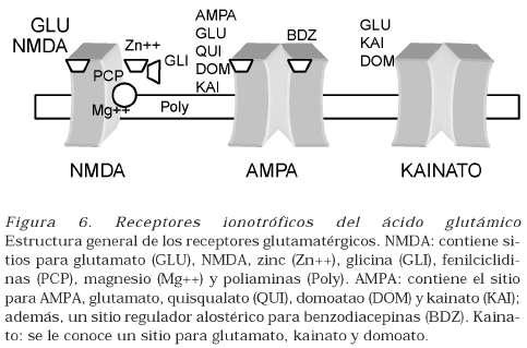 propionato de testosterona e stanozolol
