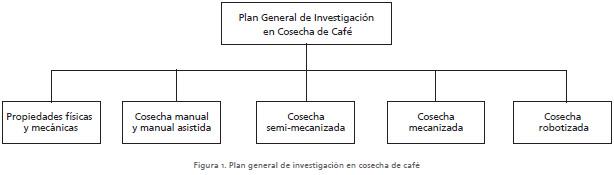 Cosecheros De Cafe  Alarcon