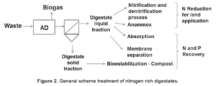 Nutrient recovery technologies for anaerobic digestion